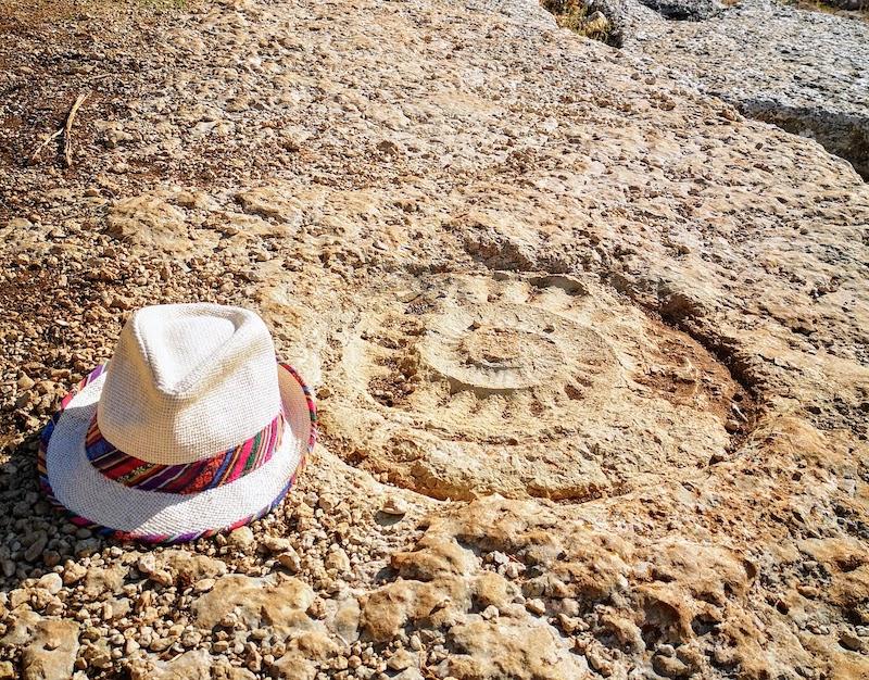 ruta_ammonites_torcal_antequera